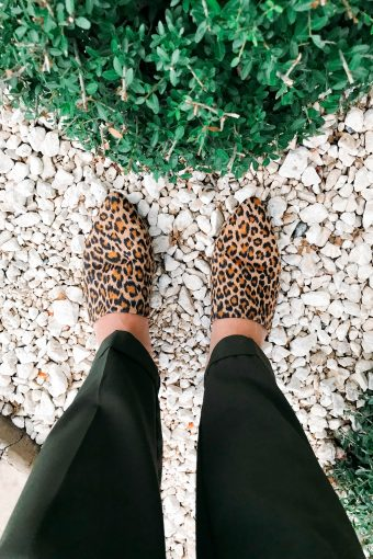 Leopard Shoes Under $25